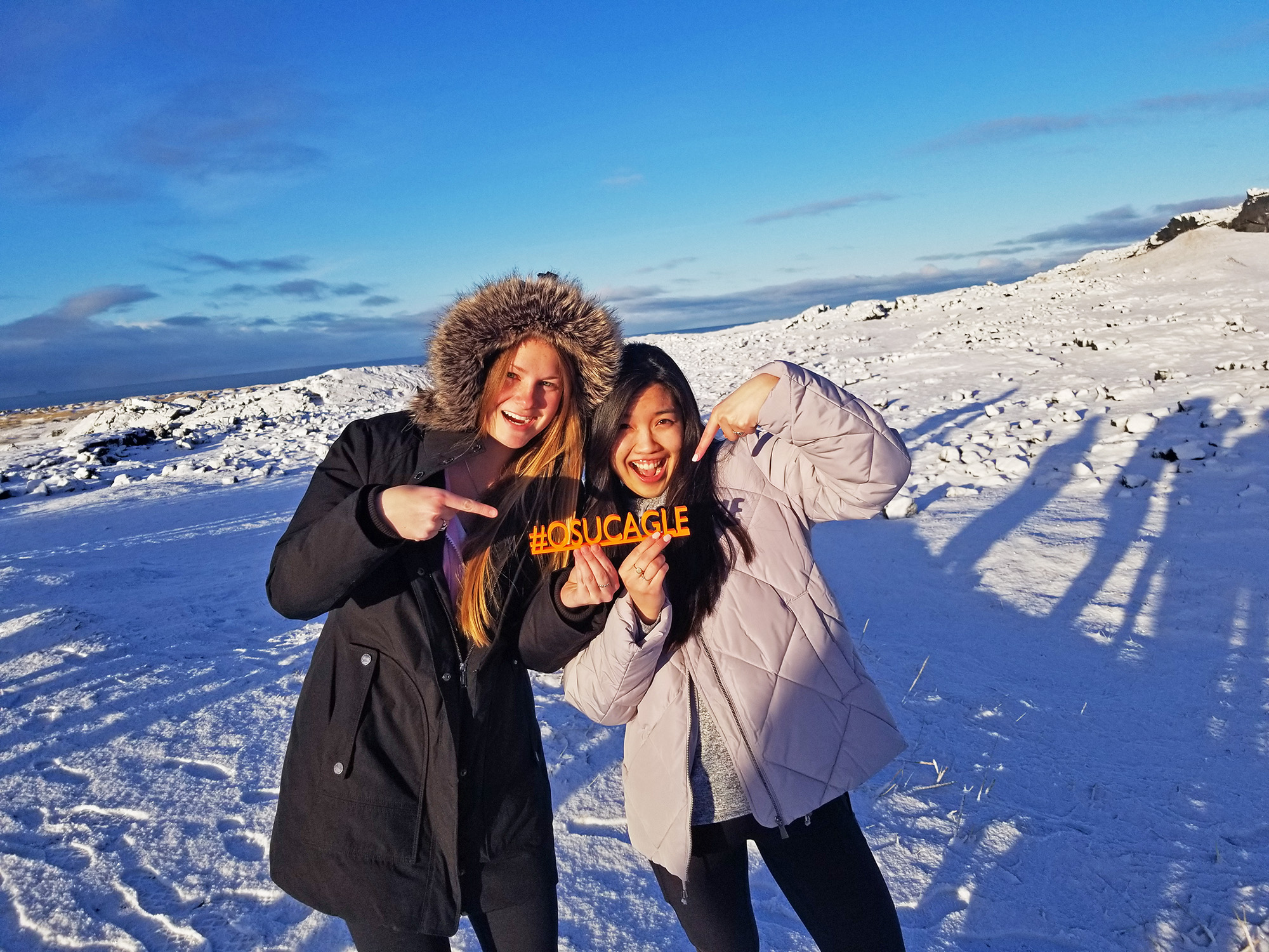 students in Iceland
